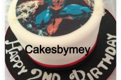 personalised childrens novelty bespoke cakes london herts (22)